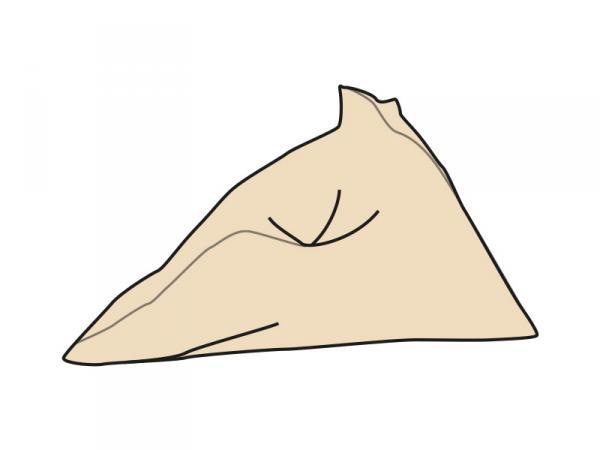 ZIGIBOY